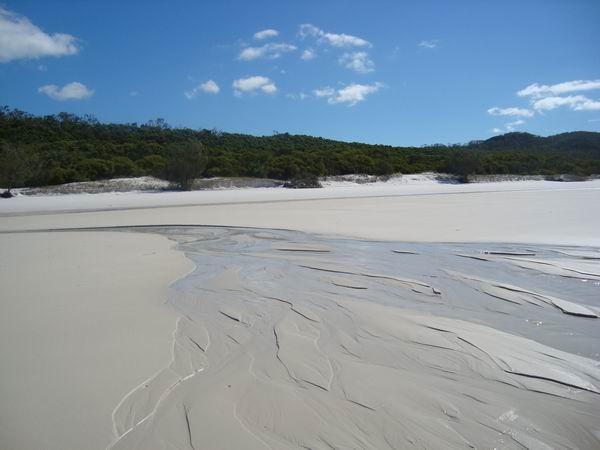 Whitehaven beach and its pristine squeaky white sand!