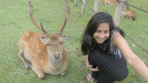 Ina doing a selfie with a deer at Nara Deer Park