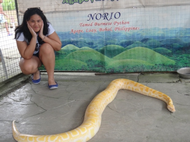 Yellow Snake!