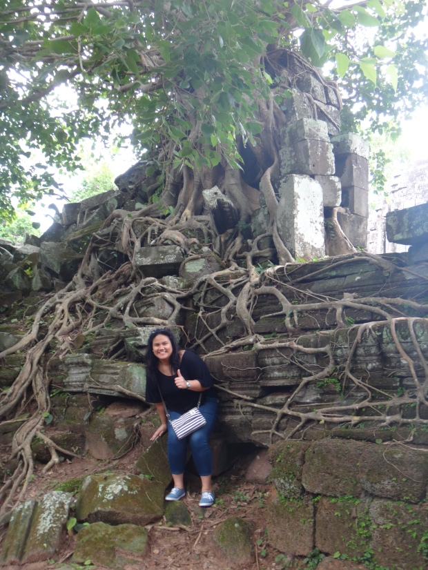 Ta Prohm Look a like tree