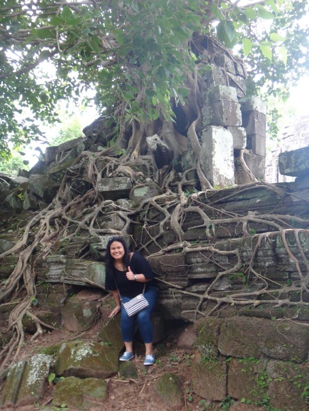 Ta Prohm Look a like tree