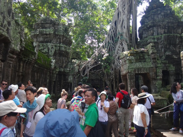 Lots of tourists at the popular Ta Prohm tree!