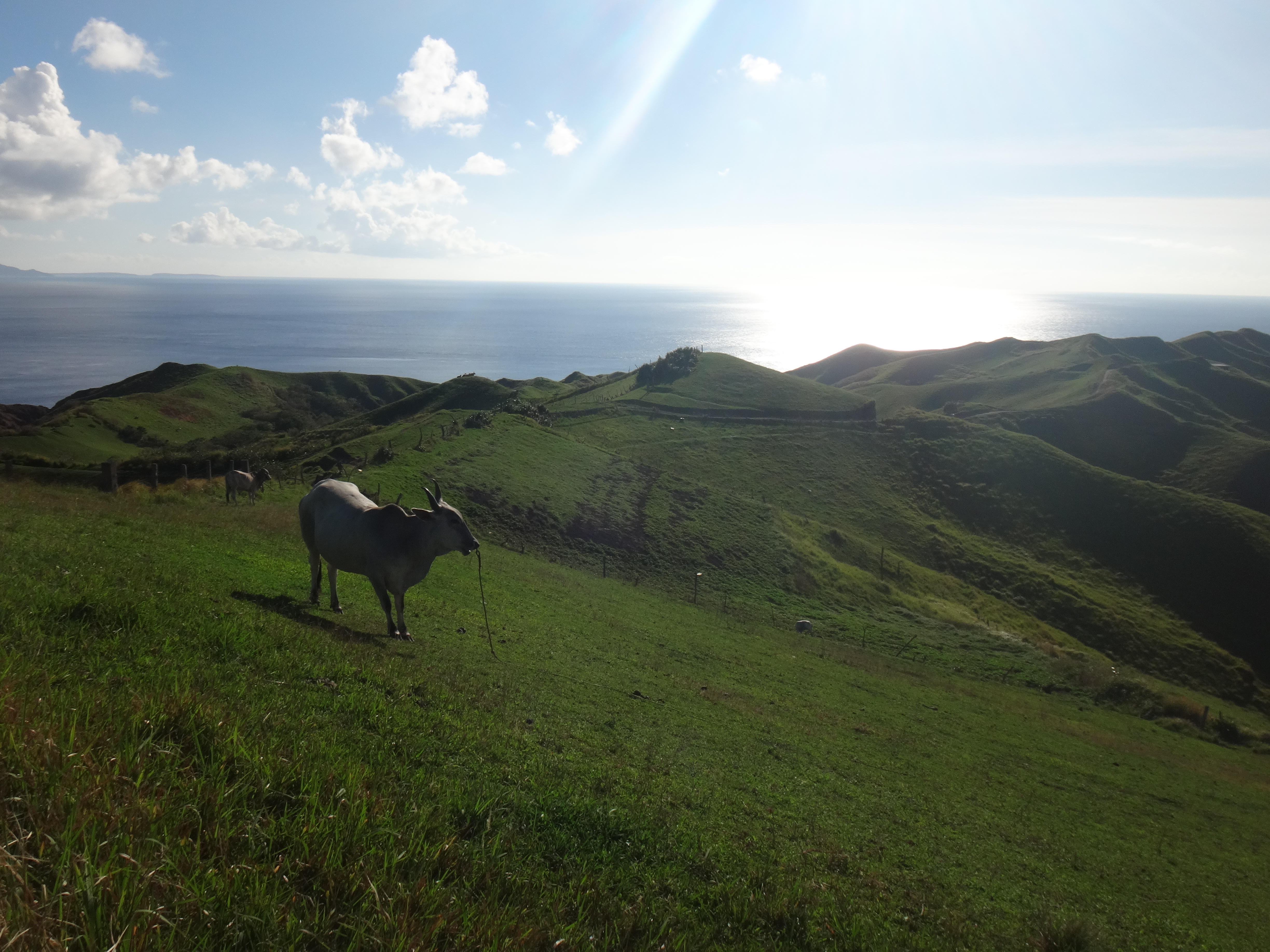 BATANES: How I Travelled to Batanes for ₱8,300 ALL-IN