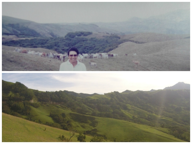 Marlboro Hills. 1995 & 2015 shot.