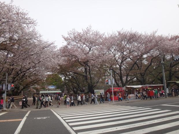 Nagoya Castle Entrance