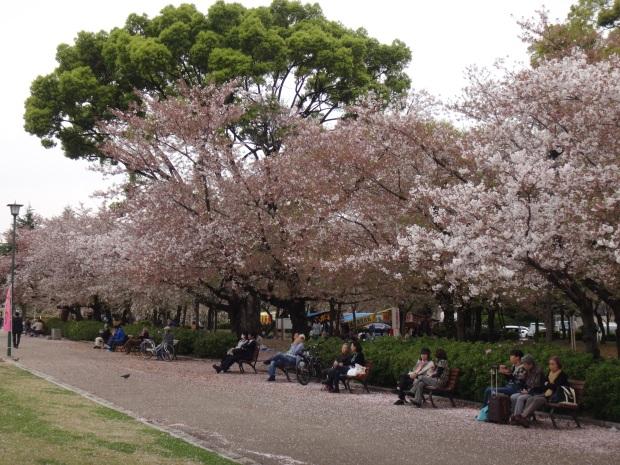 Tsurumai Park (1)