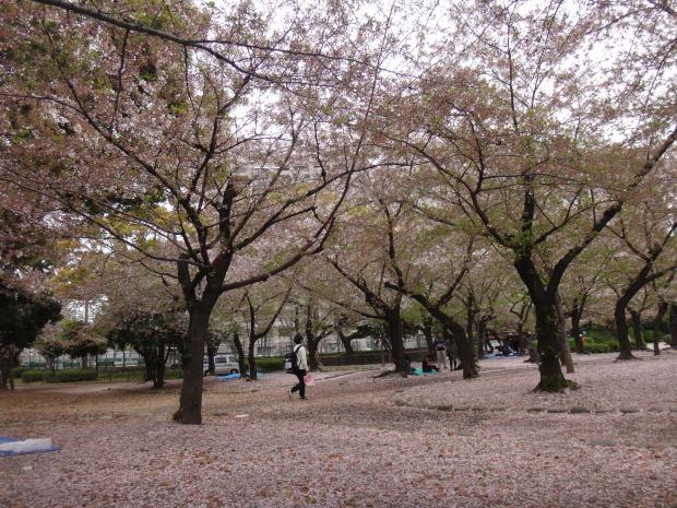 Tsurumai Park (2)