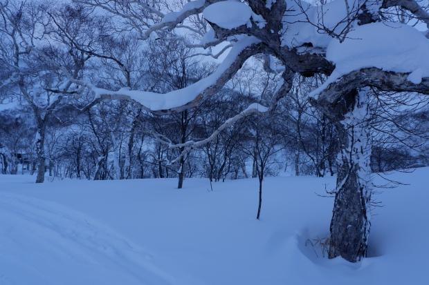 KKDay to Hokkaido (3)