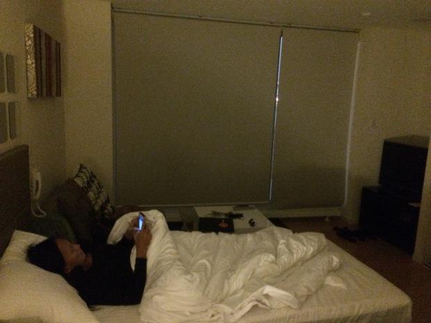 Luxury Stays HTM Niseko (44)
