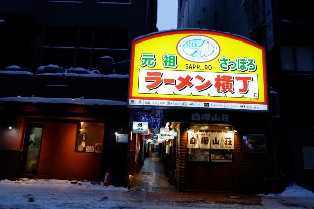 Stunning Hokkaido Best of Winter Niseko Sapporo Sounkyo Biei Lake Shikotsu (16)