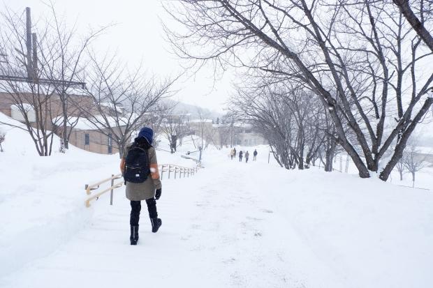 Stunning Hokkaido Best of Winter Niseko Sapporo Sounkyo Biei Lake Shikotsu (24)