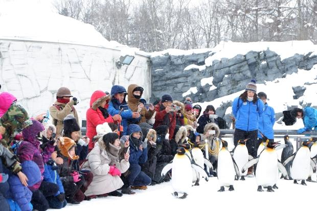 Stunning Hokkaido Best of Winter Niseko Sapporo Sounkyo Biei Lake Shikotsu (30)