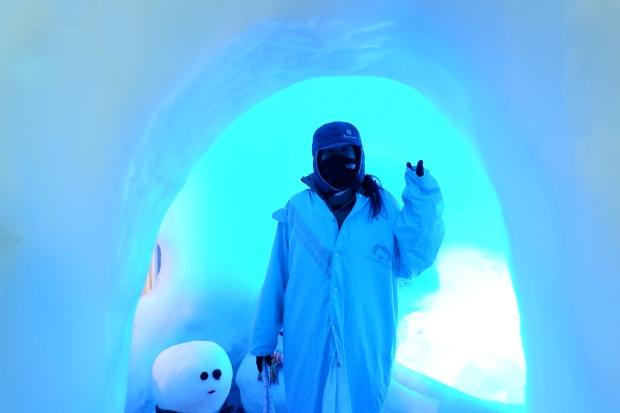 Stunning Hokkaido Best of Winter Niseko Sapporo Sounkyo Biei Lake Shikotsu (33)