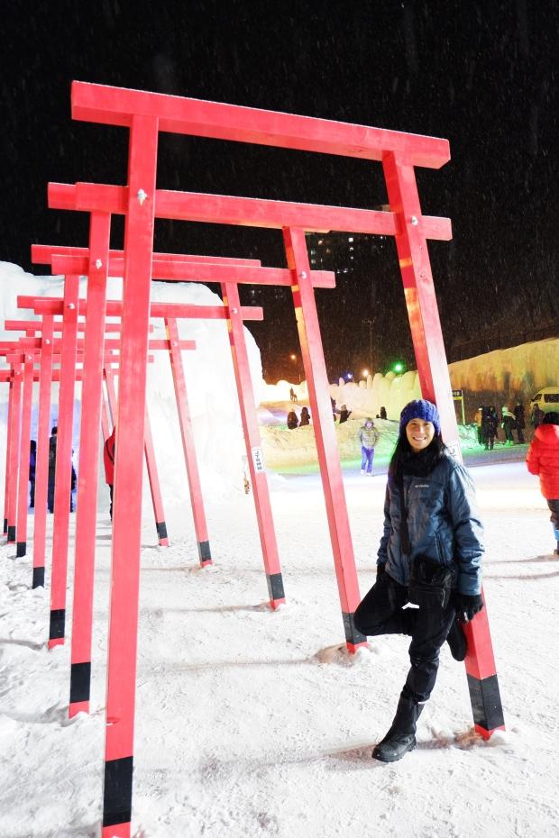 Stunning Hokkaido Best of Winter Niseko Sapporo Sounkyo Biei Lake Shikotsu (46)