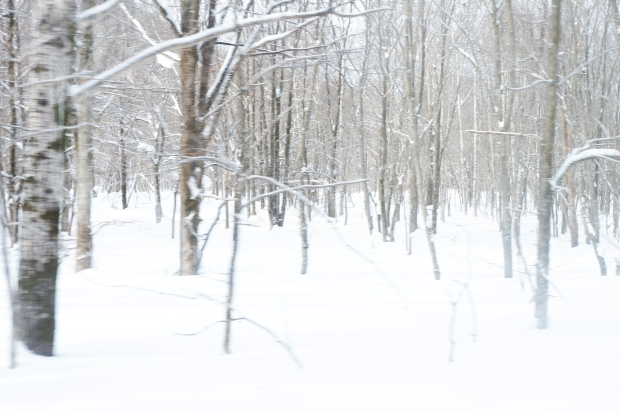 Stunning Hokkaido Best of Winter Niseko Sapporo Sounkyo Biei Lake Shikotsu (50)