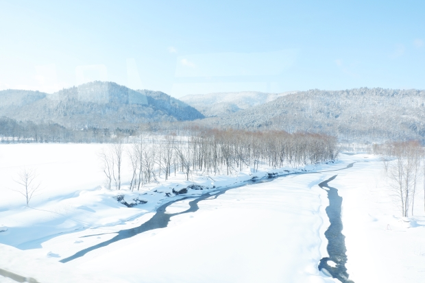 Stunning Hokkaido Best of Winter Niseko Sapporo Sounkyo Biei Lake Shikotsu (52)