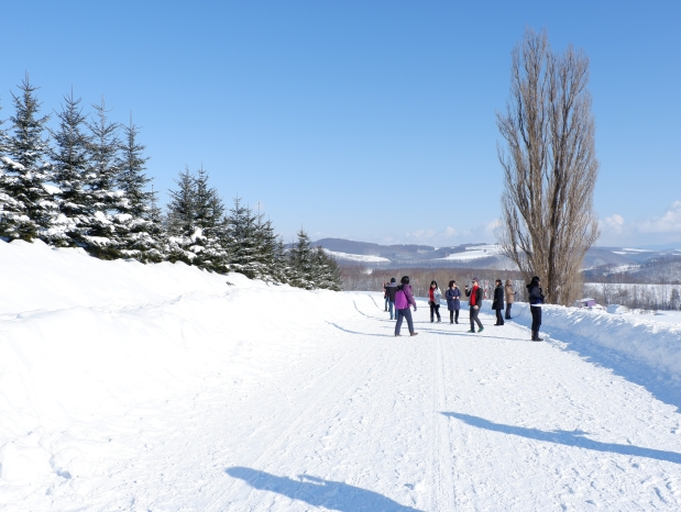 Stunning Hokkaido Best of Winter Niseko Sapporo Sounkyo Biei Lake Shikotsu (54)