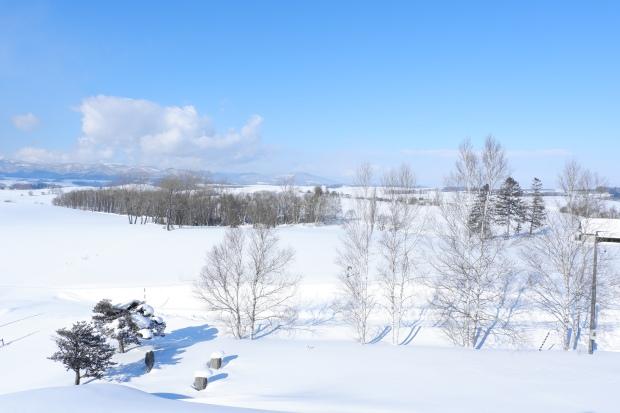 Stunning Hokkaido Best of Winter Niseko Sapporo Sounkyo Biei Lake Shikotsu (58)