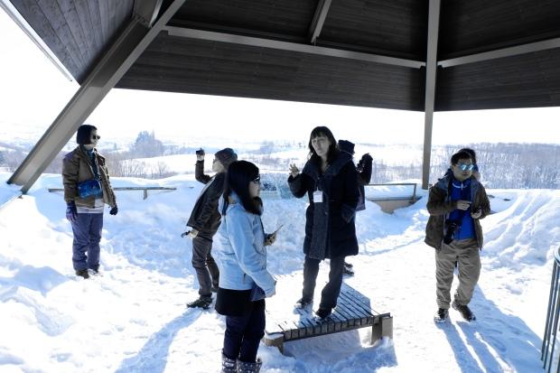 Stunning Hokkaido Best of Winter Niseko Sapporo Sounkyo Biei Lake Shikotsu (59)