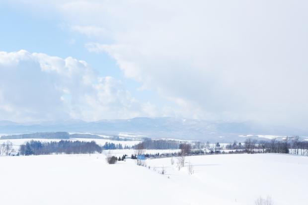 Stunning Hokkaido Best of Winter Niseko Sapporo Sounkyo Biei Lake Shikotsu (60)
