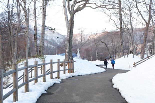 Stunning Hokkaido Best of Winter Niseko Sapporo Sounkyo Biei Lake Shikotsu (64)
