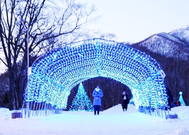 Stunning Hokkaido Best of Winter Niseko Sapporo Sounkyo Biei Lake Shikotsu (72)