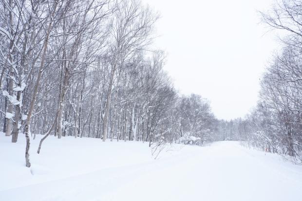 Stunning Hokkaido Best of Winter Niseko Sapporo Sounkyo Biei Lake Shikotsu (79)