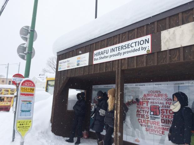Stunning Hokkaido Best of Winter Niseko Sapporo Sounkyo Biei Lake Shikotsu (81)