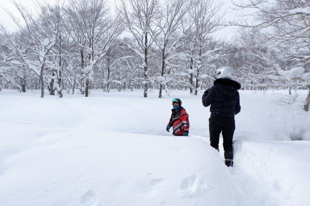 Stunning Hokkaido Best of Winter Niseko Sapporo Sounkyo Biei Lake Shikotsu (90)