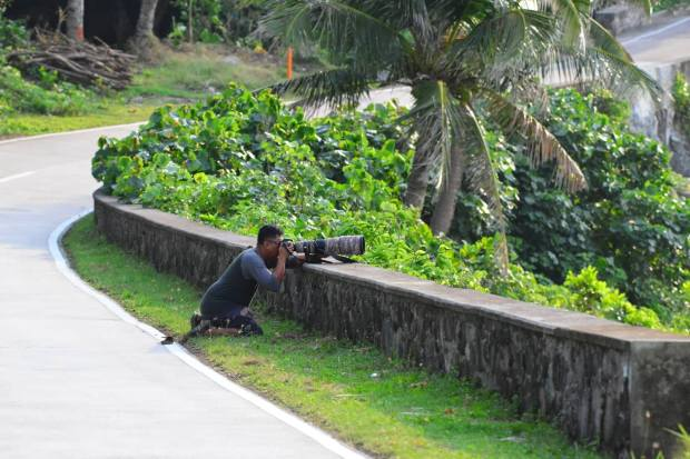 Bird Watching & Photography BISUMI Batanes (2)
